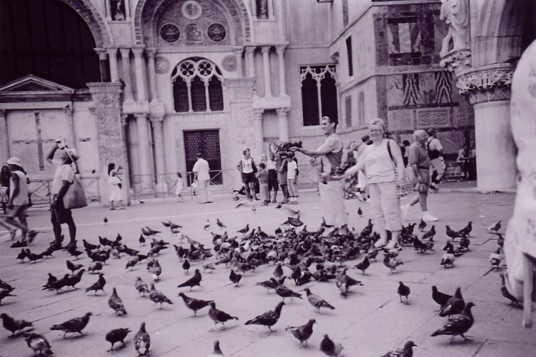 A black and white lomograph of a flock of pigeons in the Piazza San Marco, Venice