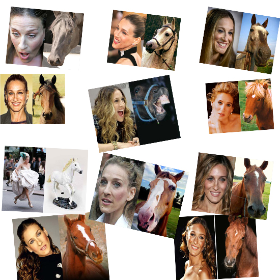 A montage of Sarah Jessica Parker looking like horses.  Horse face.  Horse-face.