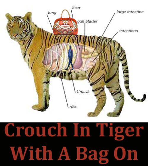 Peter Crouch inside a tiger with a Prada handbag on it