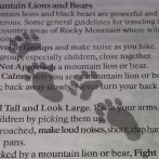 """7 Reasons to Ignore """"Official"""" Advice on Mountain Lions and Bears"""